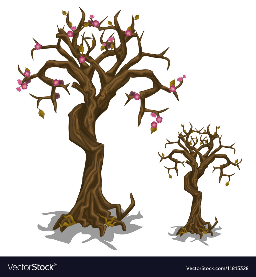 Dead tree with few flowers Symbol of rebirth vector image