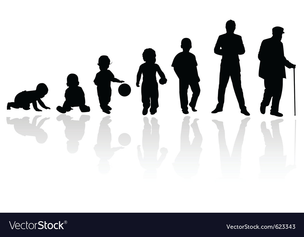 Age evolution silhouettes vector image