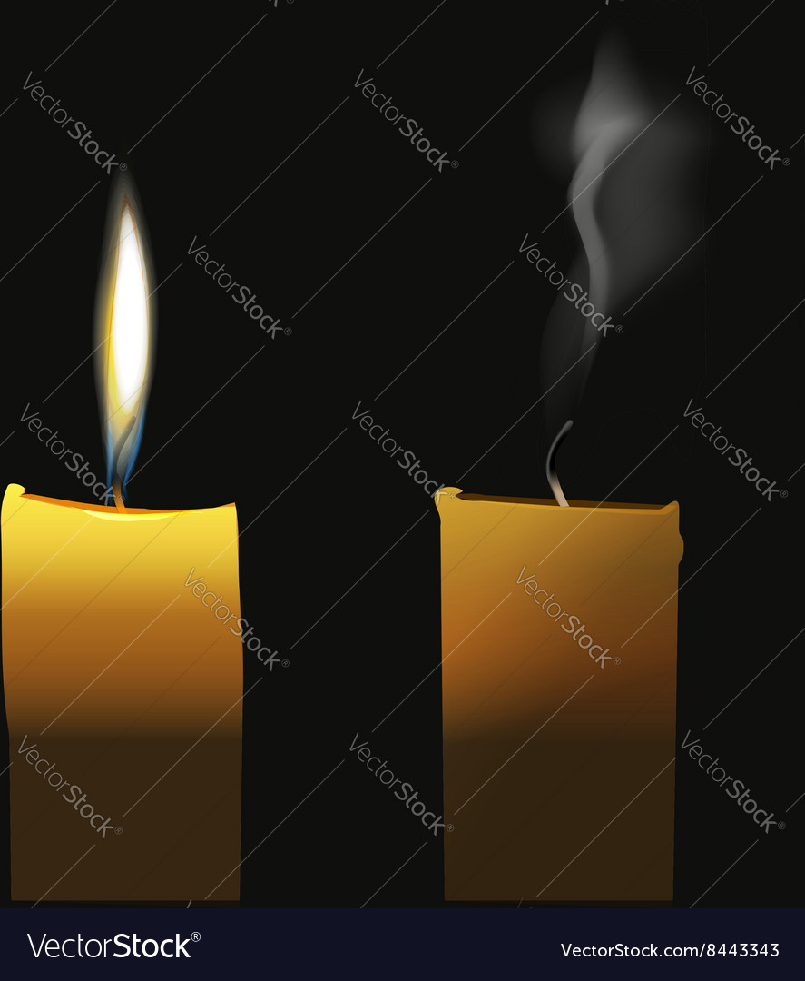 Realistic candle flaming and extinct wick with vector image
