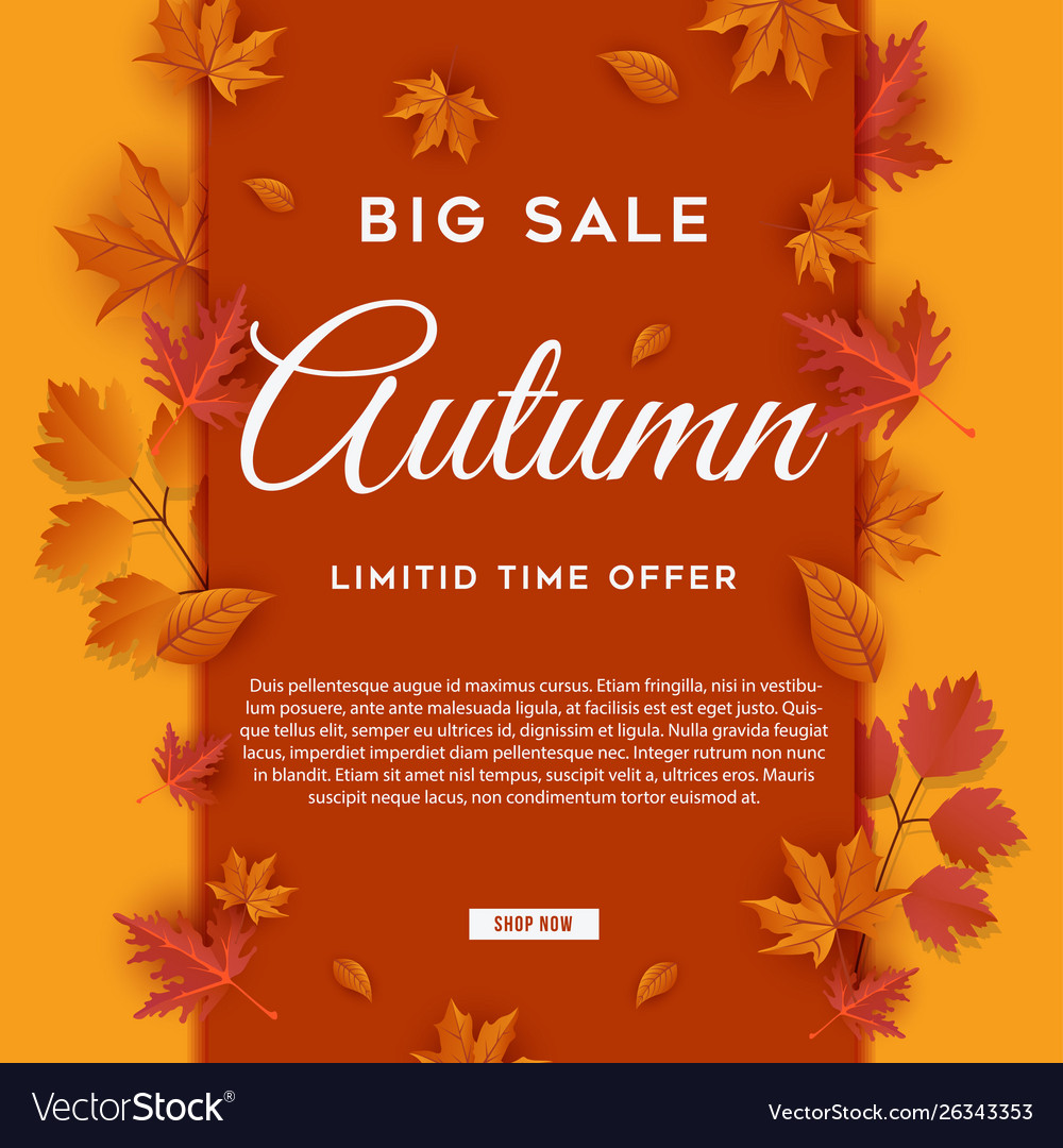 Autumn big sale leaves background