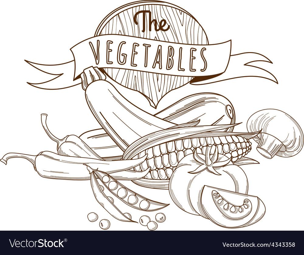 Outline hand drawn sketch vegetable still life