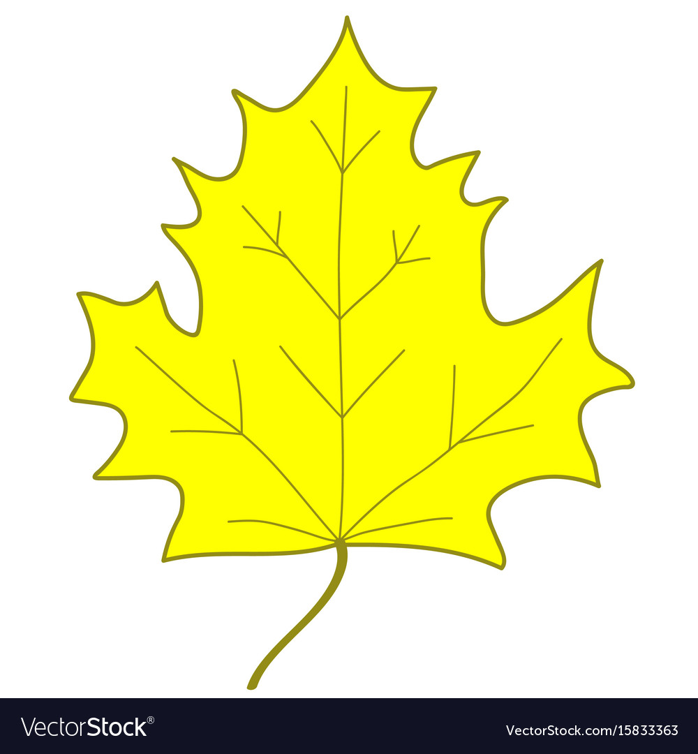 Maple leaf yellow sign 307 vector image