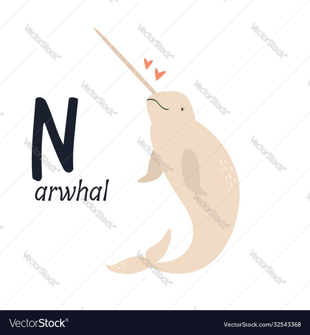 Funny image narwhal and letter n zoo alphabet