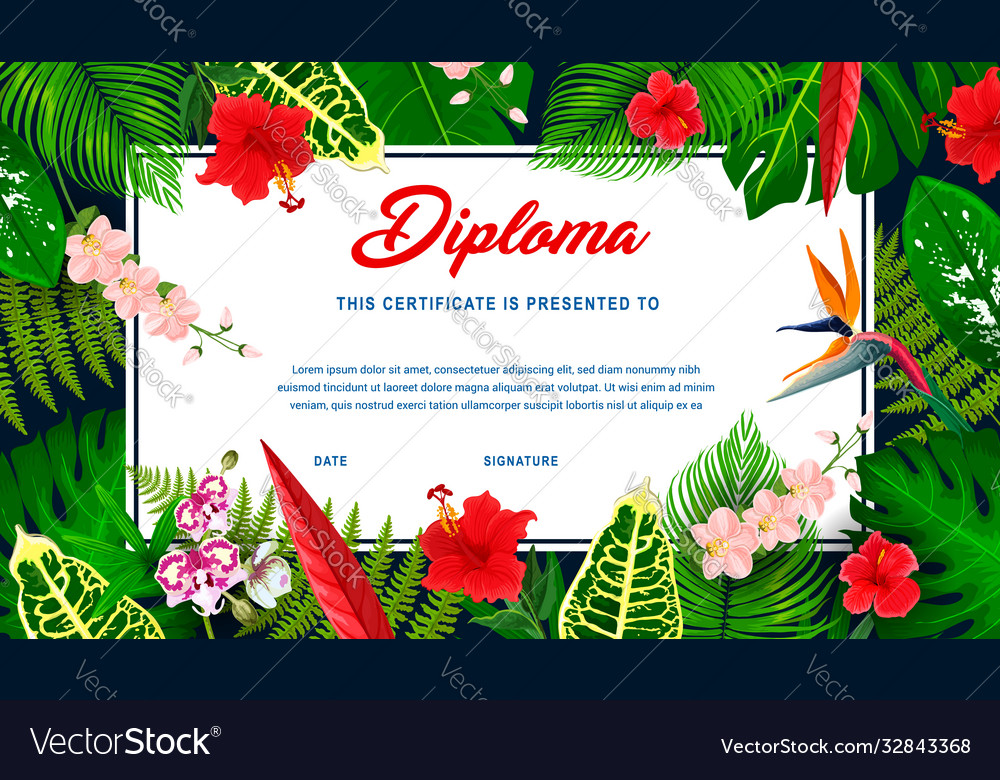 Kids diploma with tropical plants and flowers