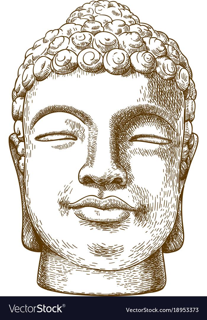 Engraving drawing of stone buddha head