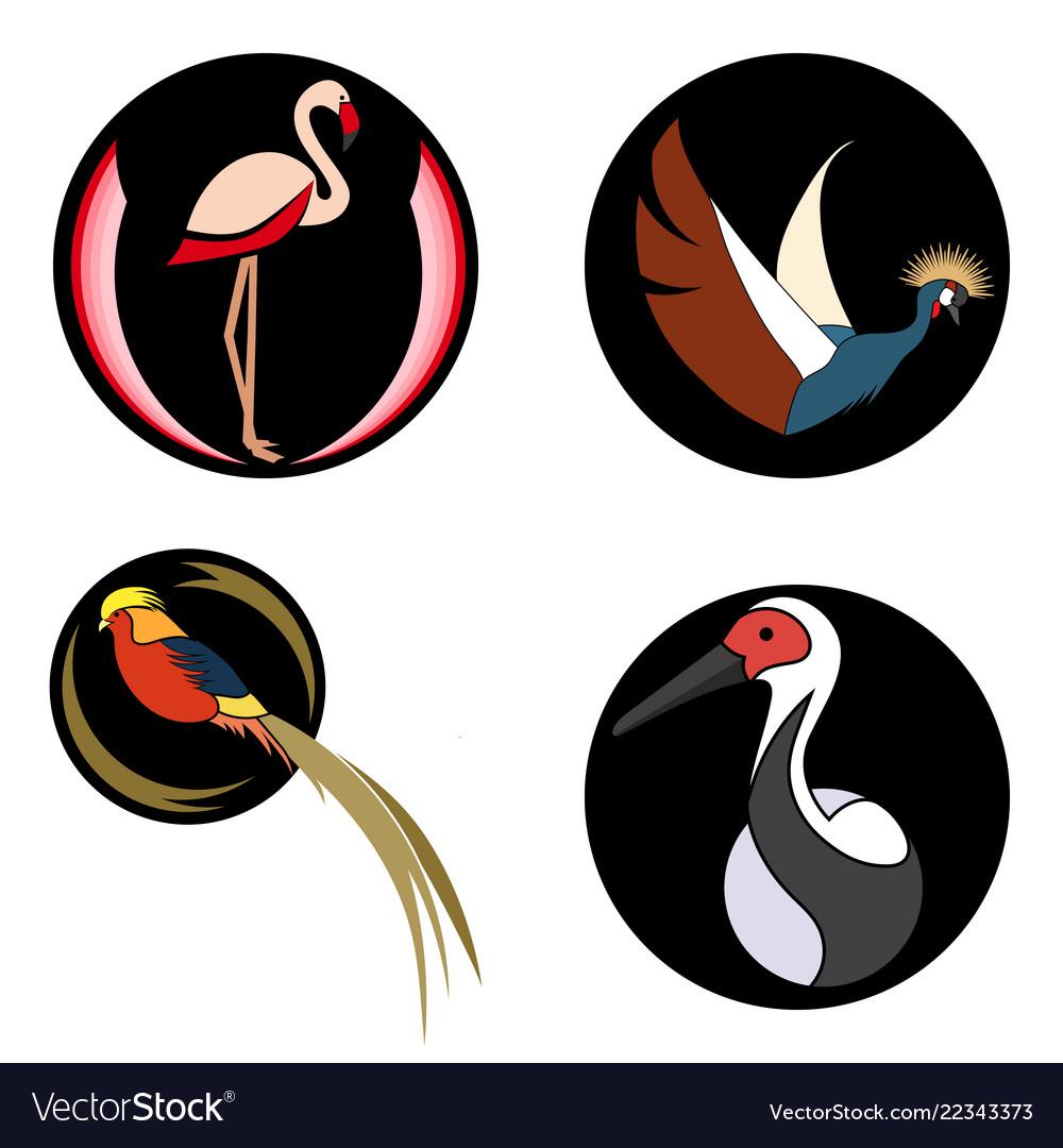 Set of bright birds on black circles for logo