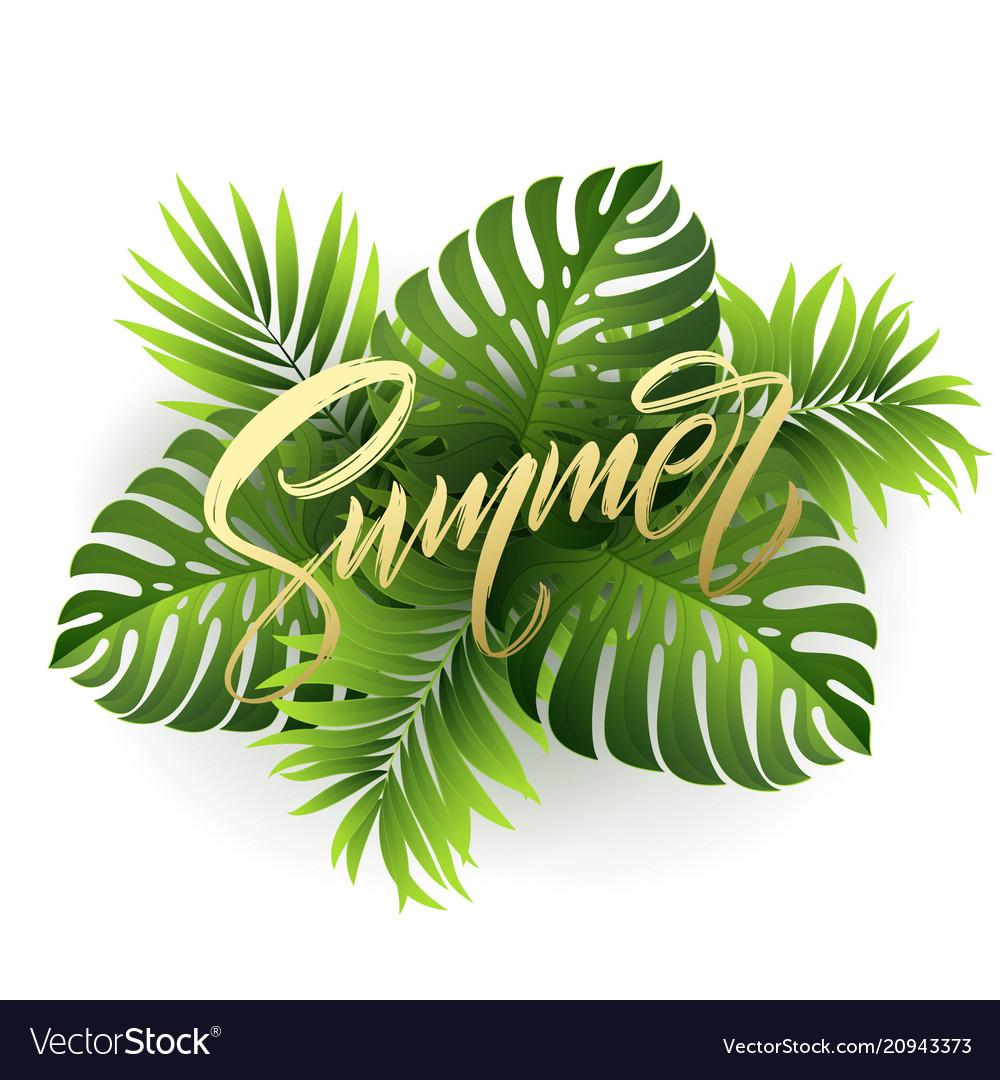 Summer lettering on palm leaf background