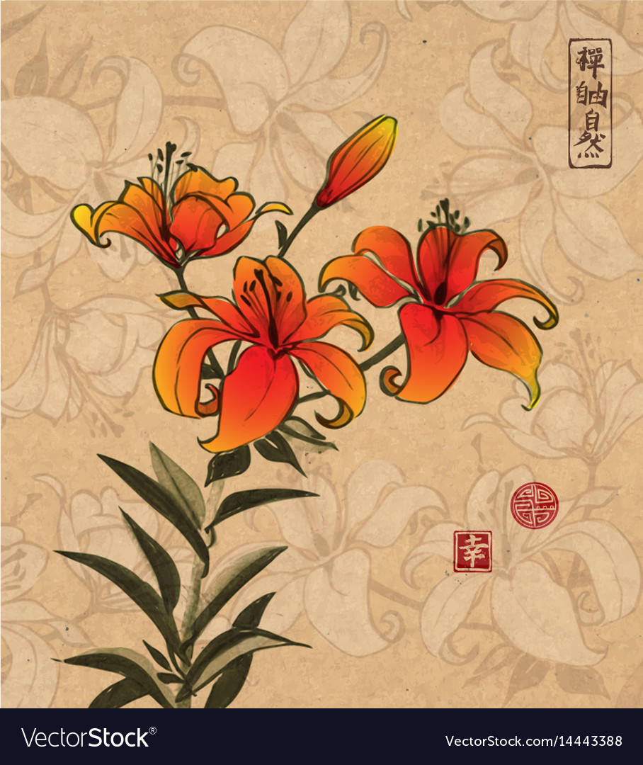 Orange Lily Flowers On Vintage Background With Vector Image