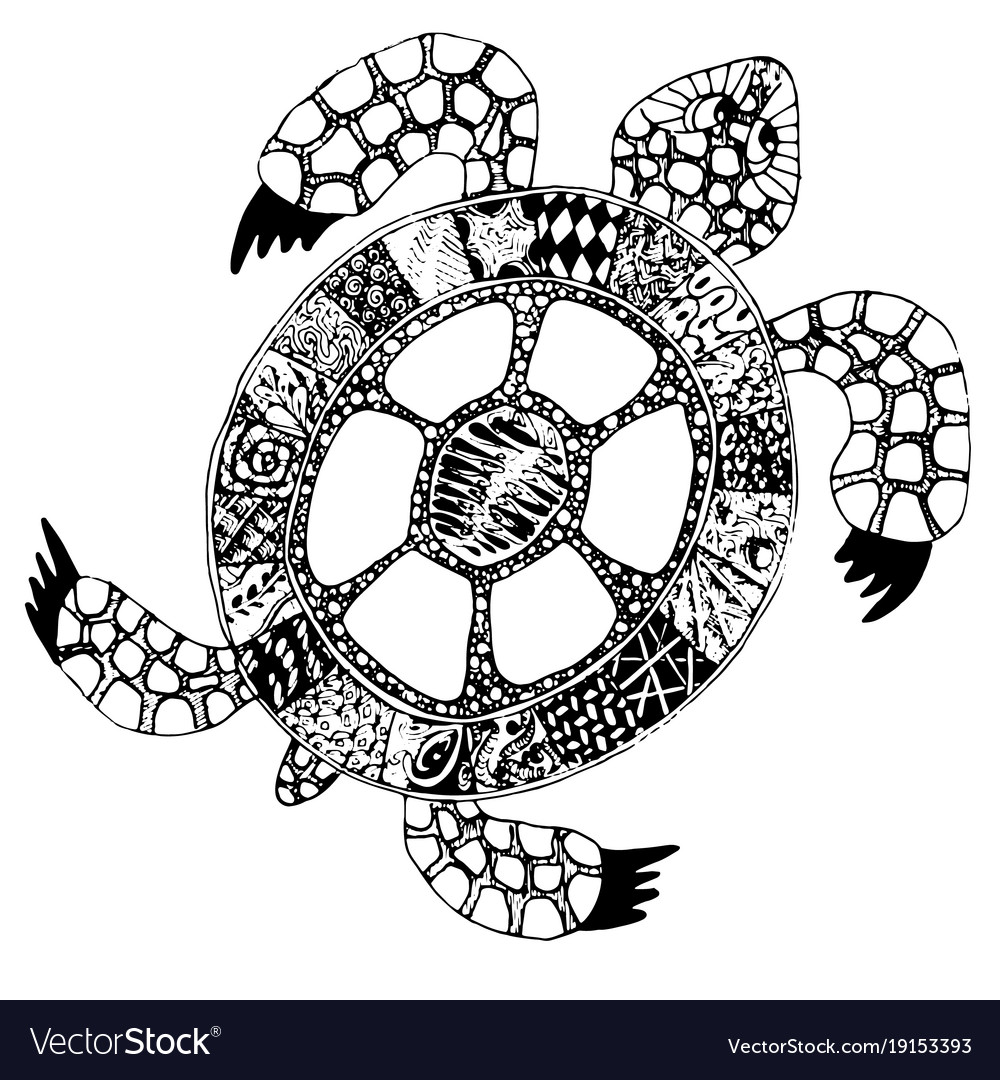 Hand drawn doodle turtle tortoise with