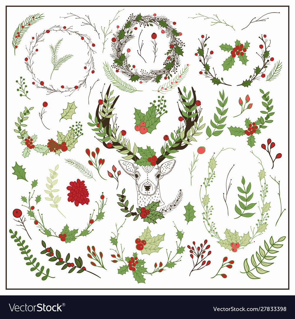 Hand drawn christmas floral elements