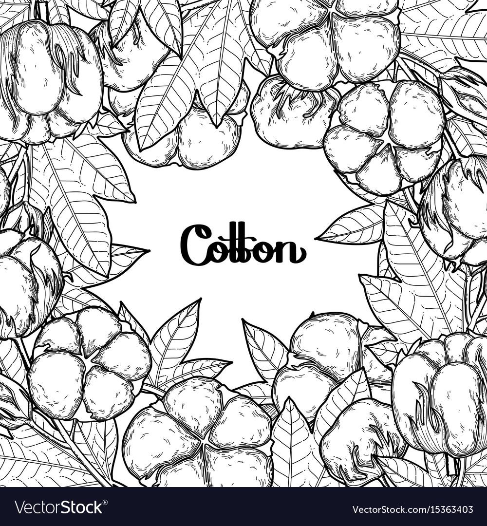 Graphic cotton plants