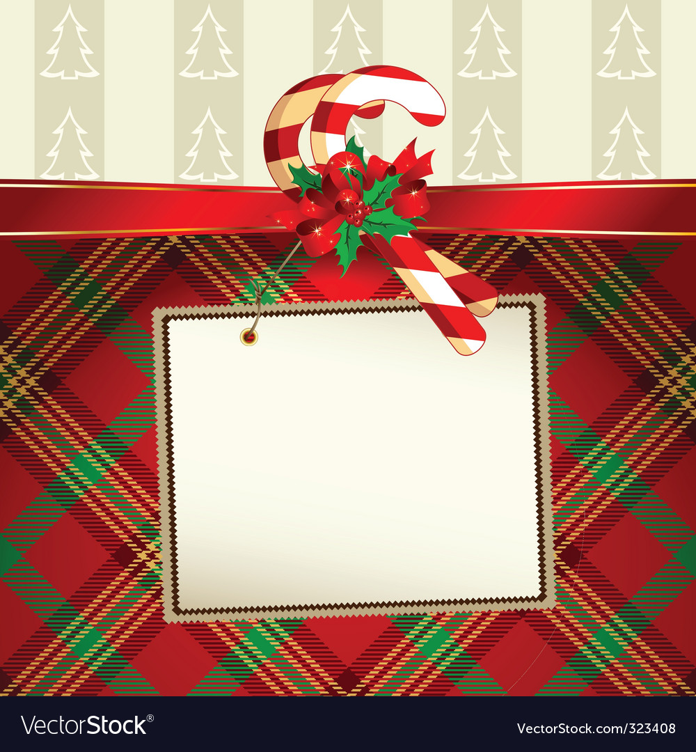 Christmas decoration with tag vector image