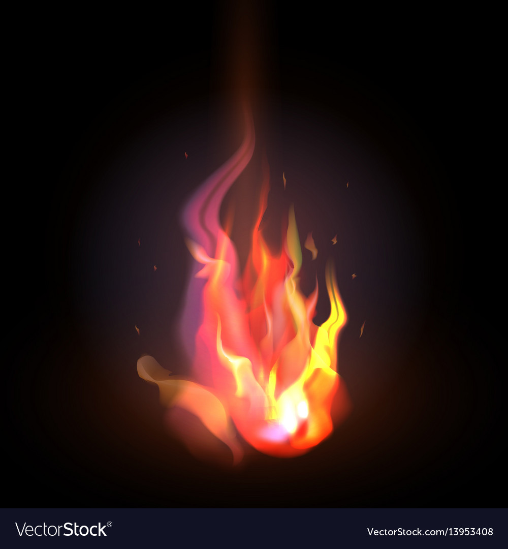 Isolated realistic orange and red fire flame on a