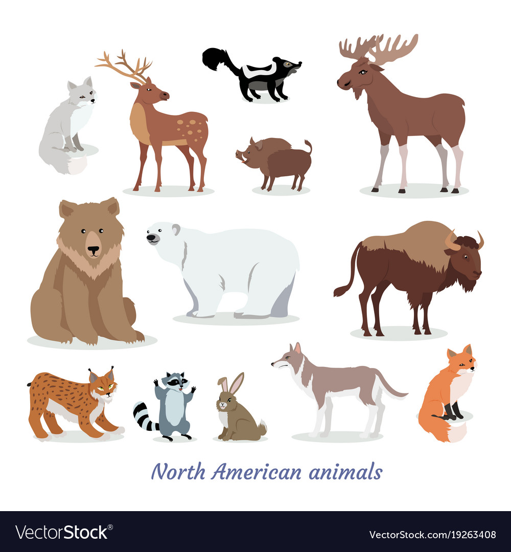 animal testing in north america The search strategy involved subsequent manual review for inclusion of publications from north american research groups only and exclusion of studies that did not involve immunotherapy, review papers, and animal studies.