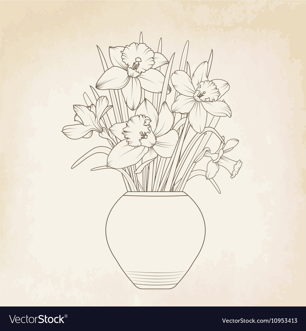 Narcissus daffodils flowerpot vase bouquet vector image