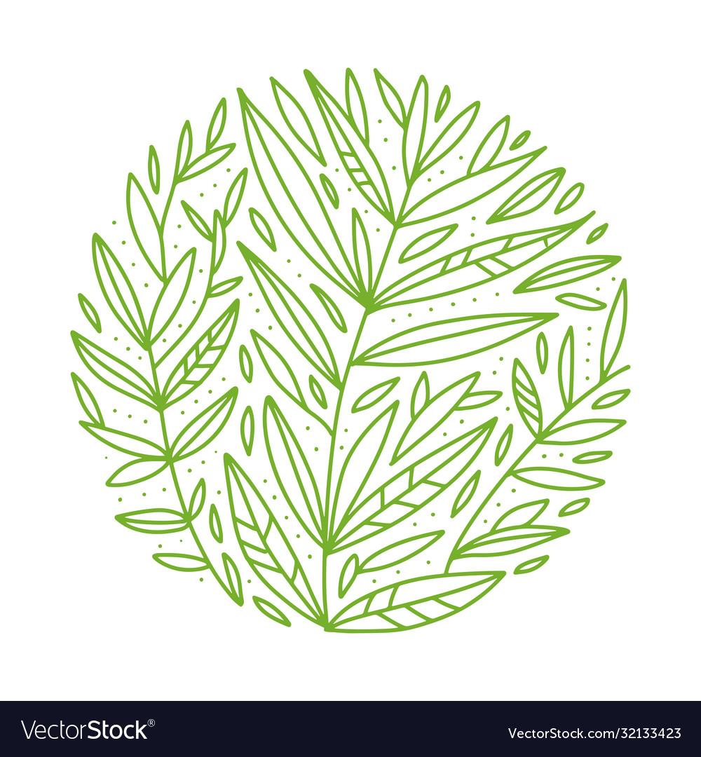 Green foliage botanical round sketch of