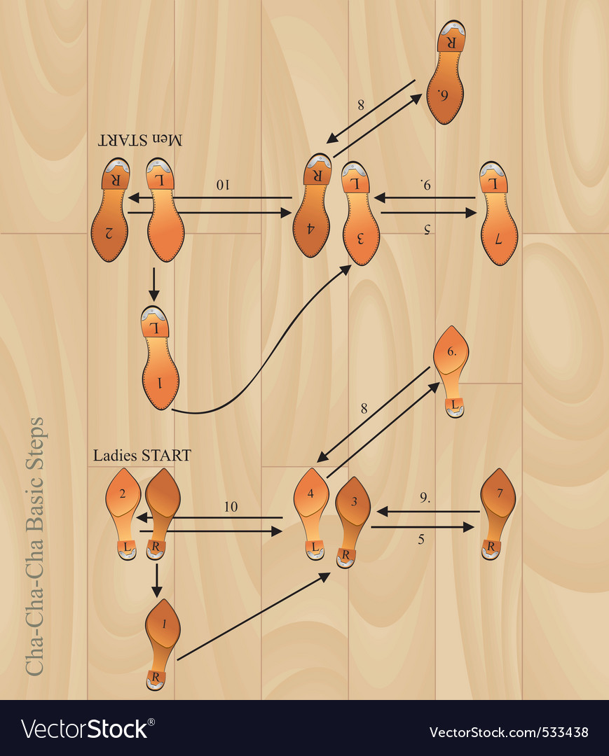 Chacha basic steps vector image