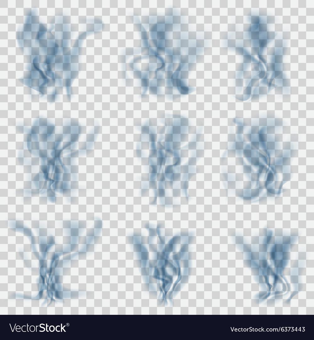 Set of translucent light blue smoke vector image