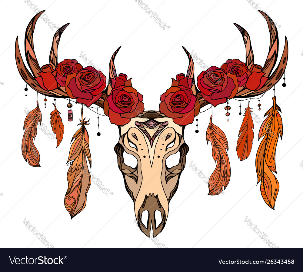 A deer skull with roses feathers and boho patte