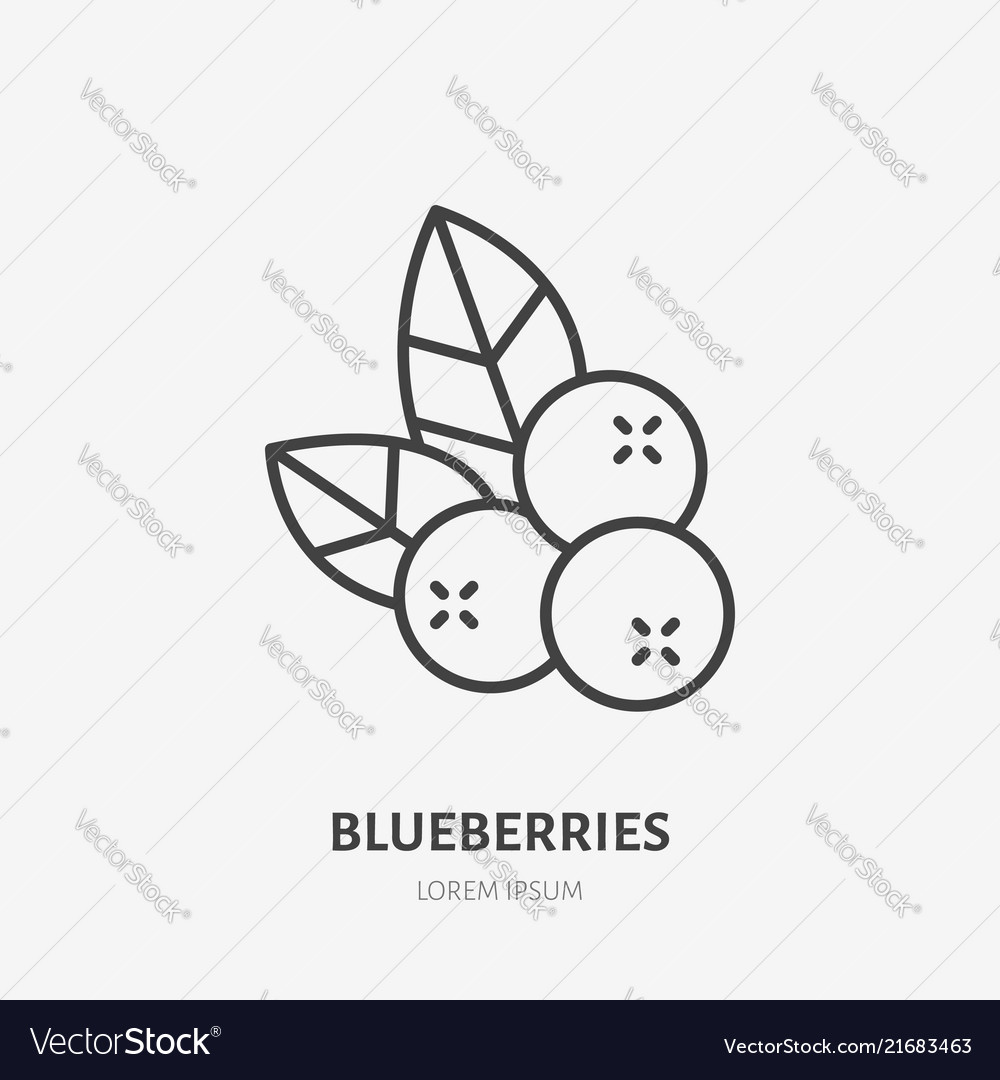 Blueberry flat line icon forest berry sign