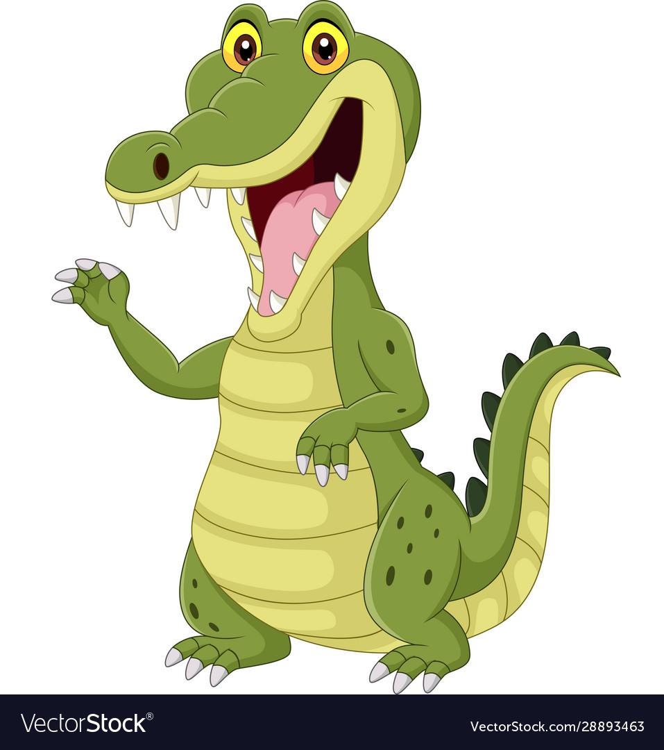 Cartoon funny crocodile isolated