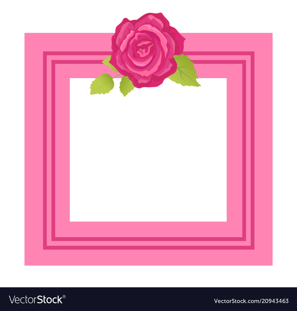 Decorative frame for photo or text spring flower vector image