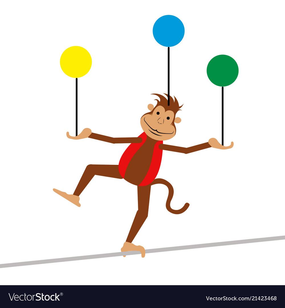 Isolated circus monkey