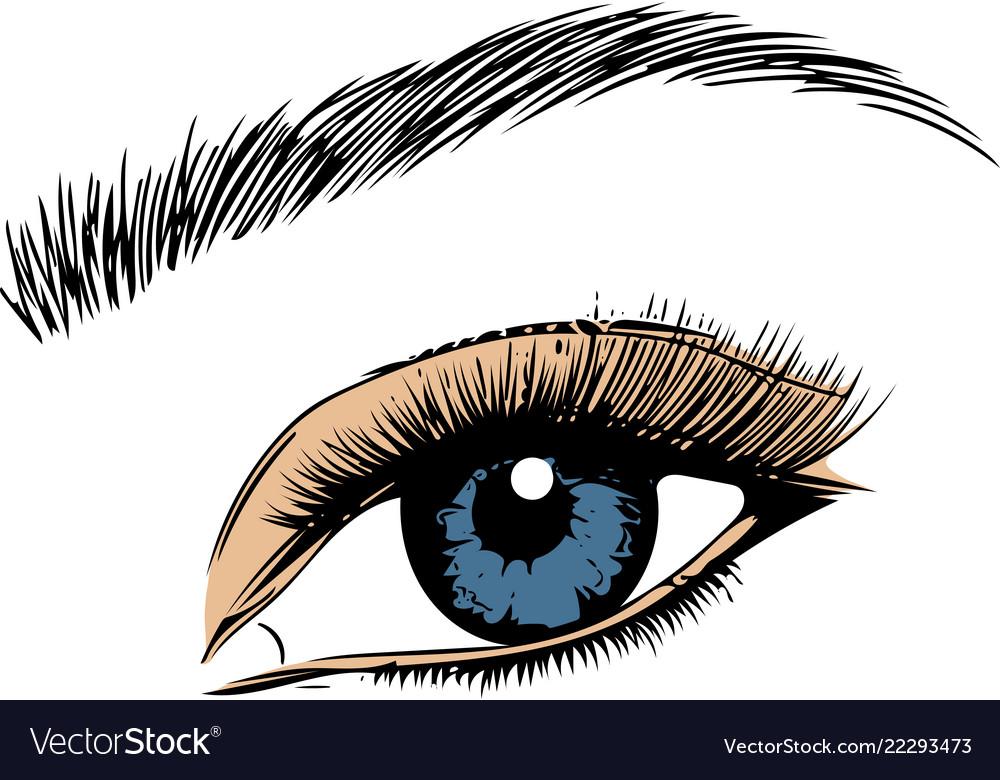 Eye on white background eyes art woman eye the