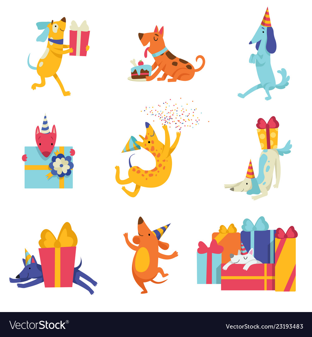 Collection Of Cute Dogs In Party Hats With Gift Vector Image