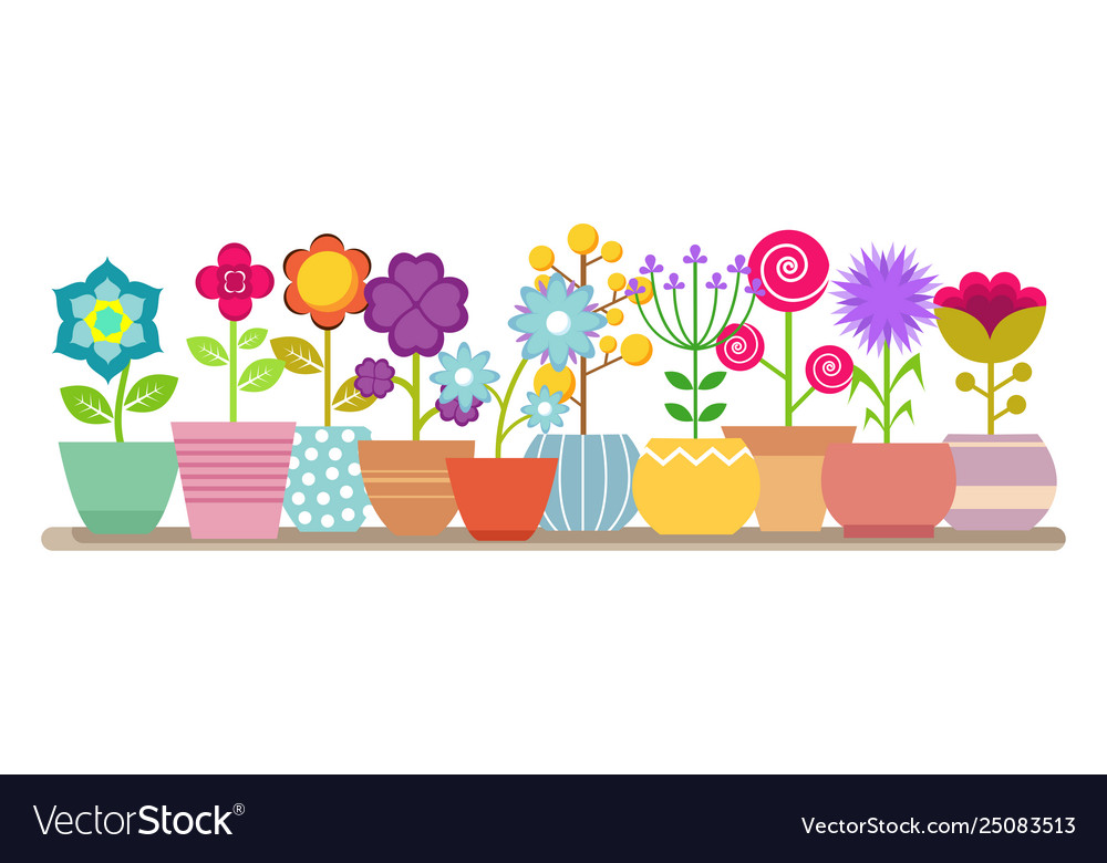 Spring and summer flowers in pots
