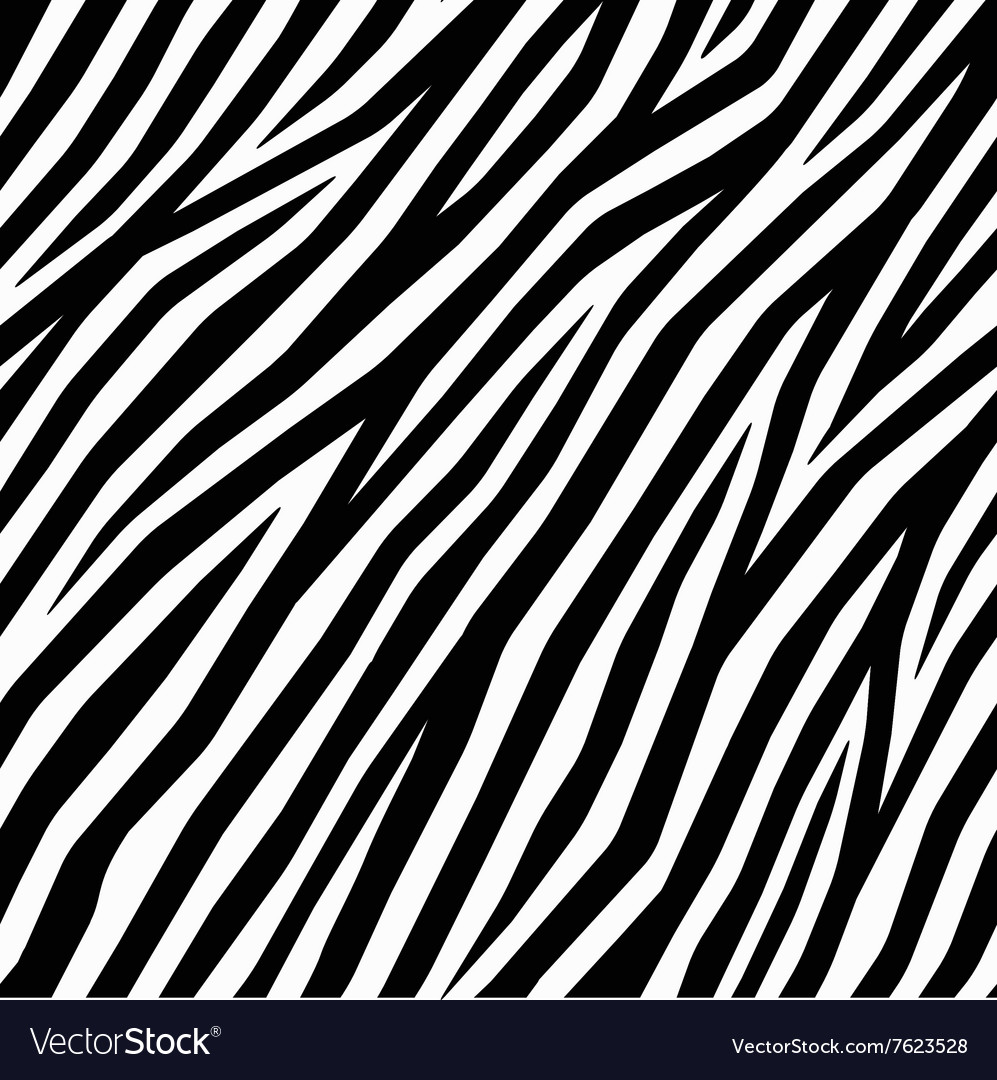 smooth zebra print royalty free vector image vectorstock rh vectorstock com Zebra Print Border zebra print vector art