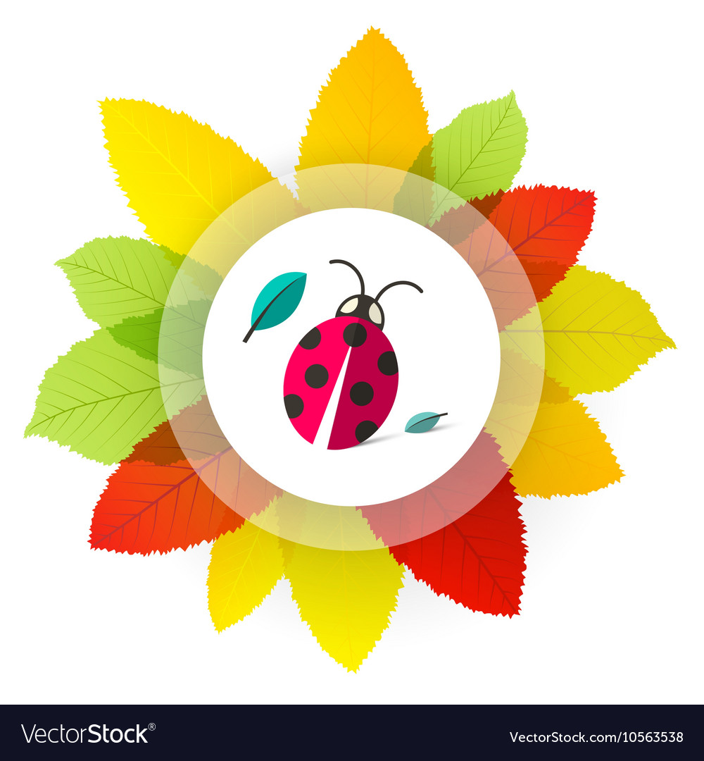 Ladybug - Ladybird on Leaves Cartoon with Colorful