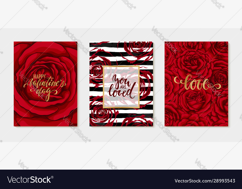 Set luxury happy valentines day card with red