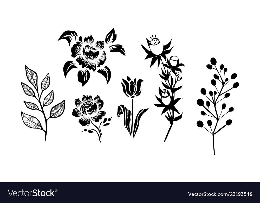 Flowers and plants set monochrome botanical