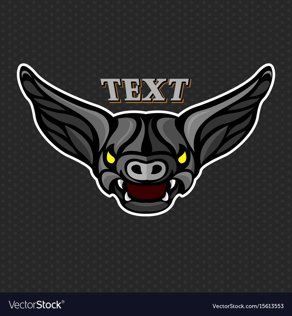 Bat logo icon design vector image