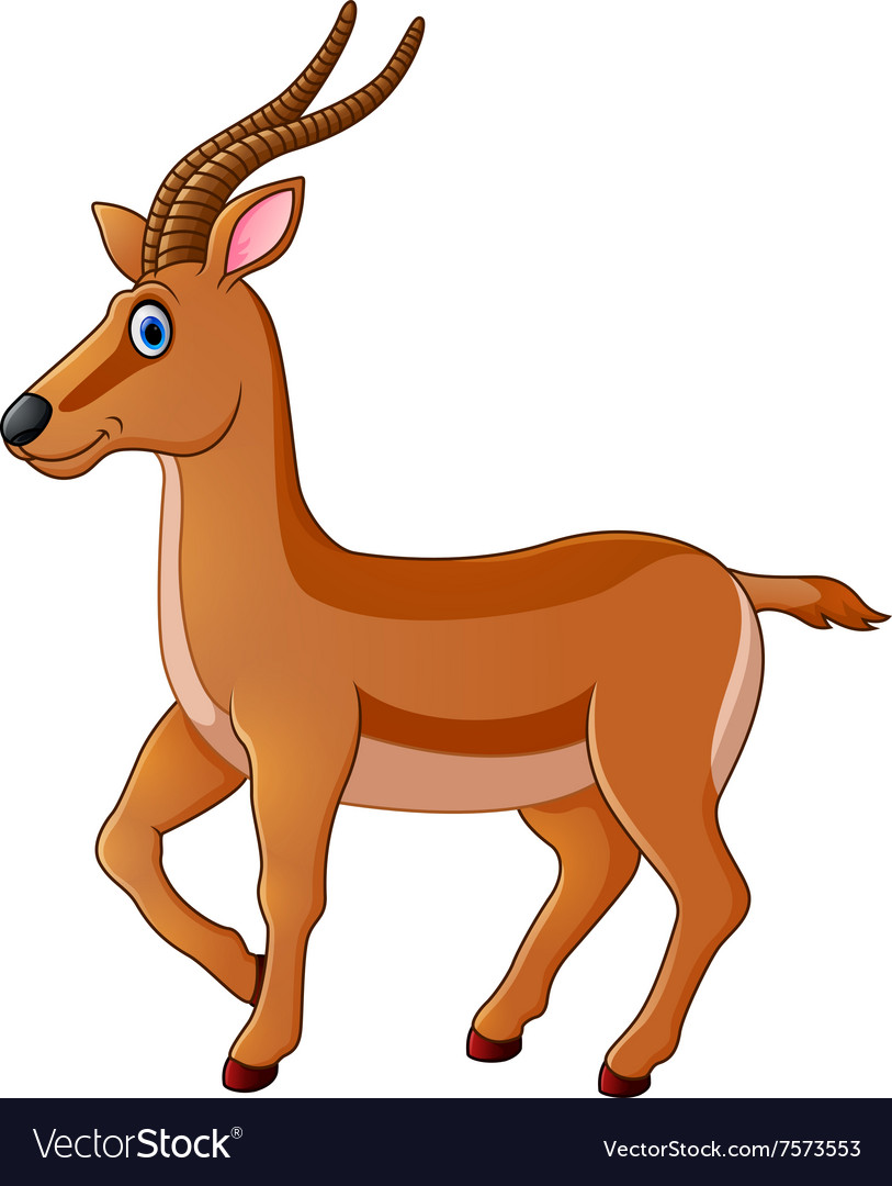 Cute gazelle cartoon vector image