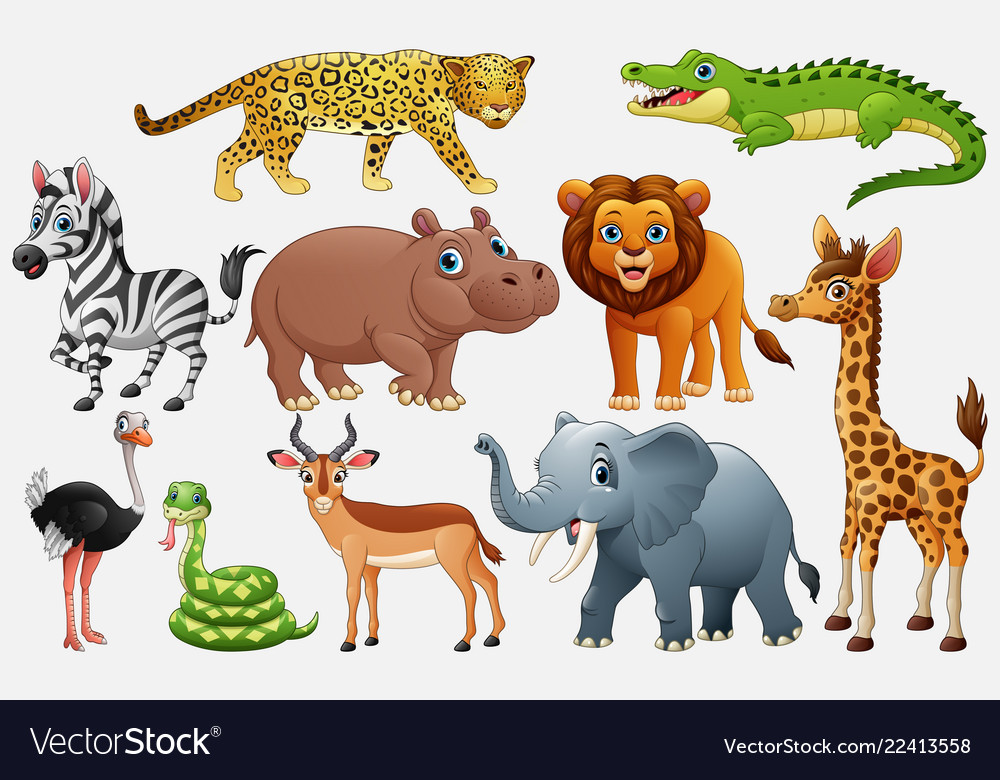 Cartoon wild animals on white background Vector Image