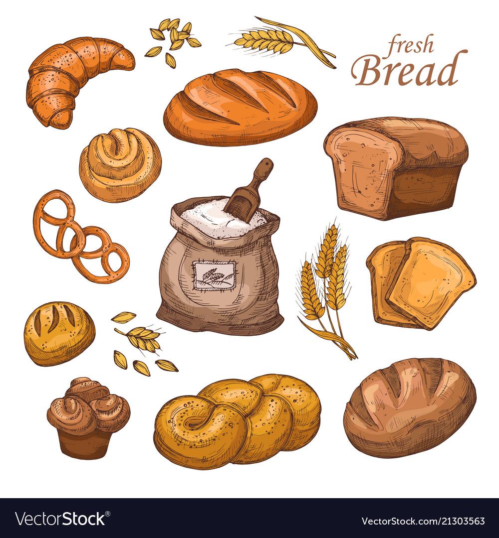 Cartoon bread fresh bakery product flour ears
