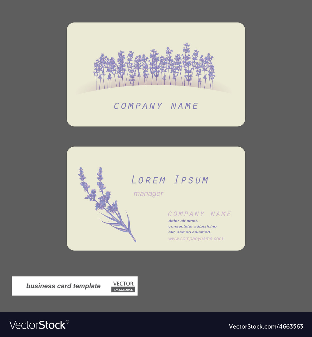 Lavender business cards royalty free vector image lavender business cards vector image reheart Images