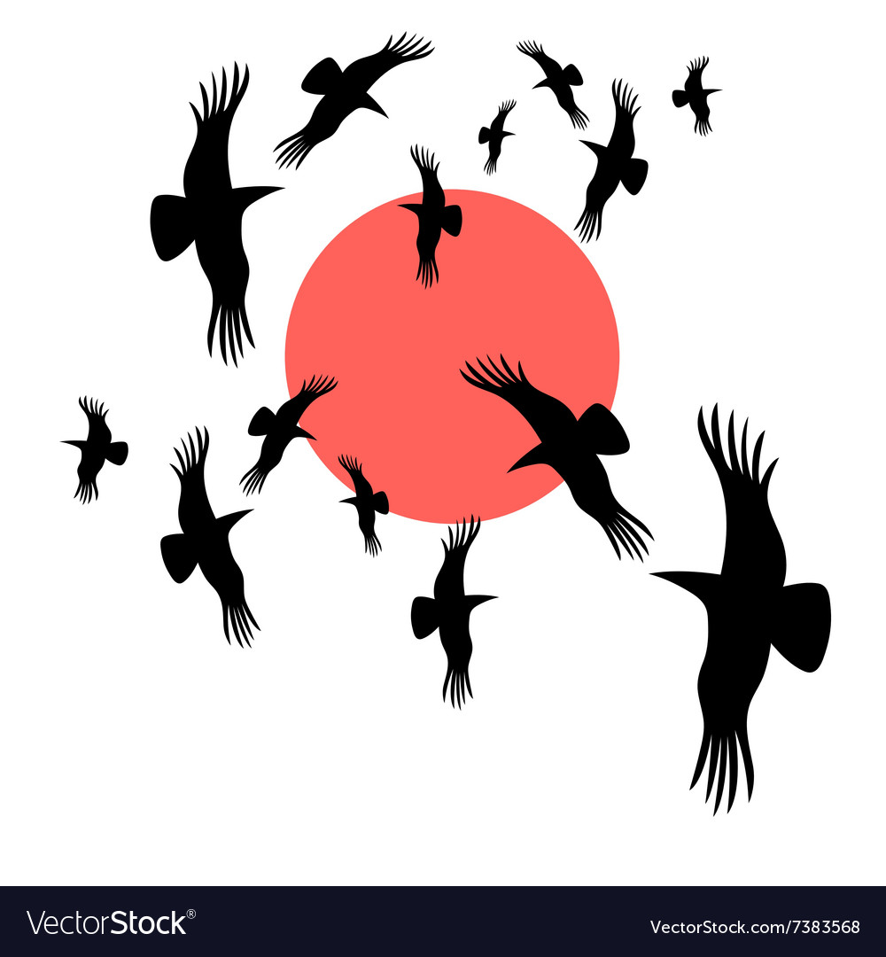 Flocks of crows circling the sun