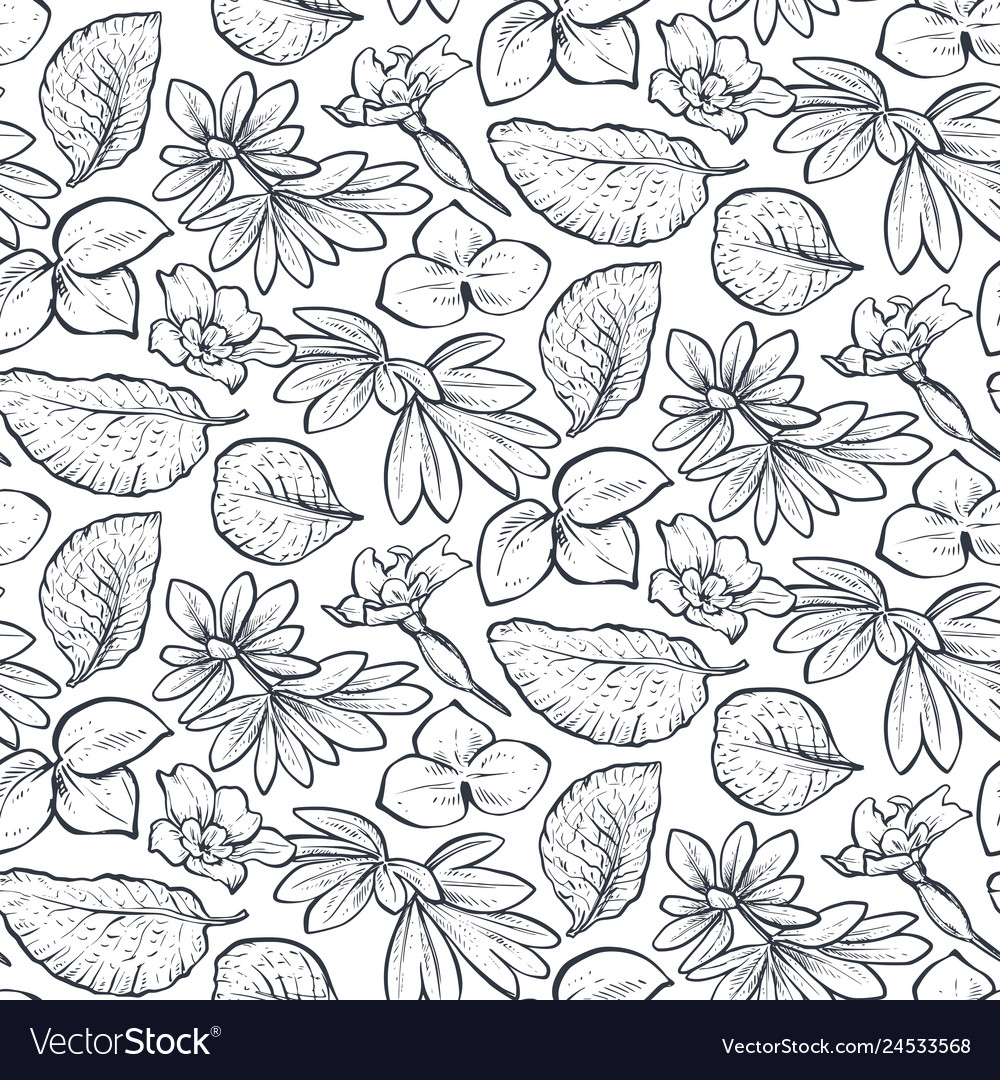 Seamless pattern with hand drawn spring