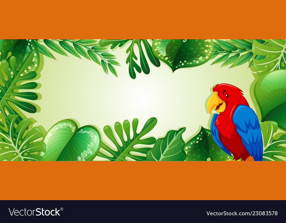 parrot in jungle template royalty free vector image