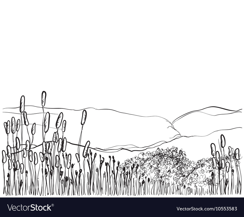 Hand drawn reed Floral seamless background