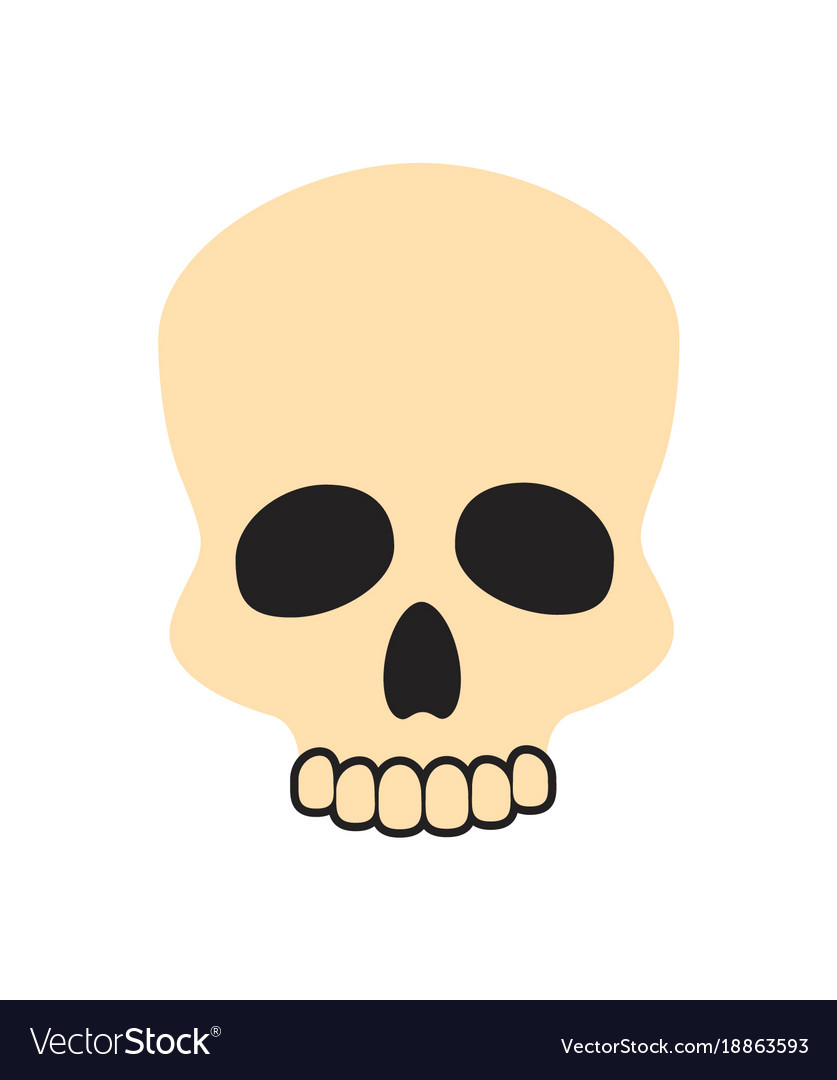 Closeup of beige skull on