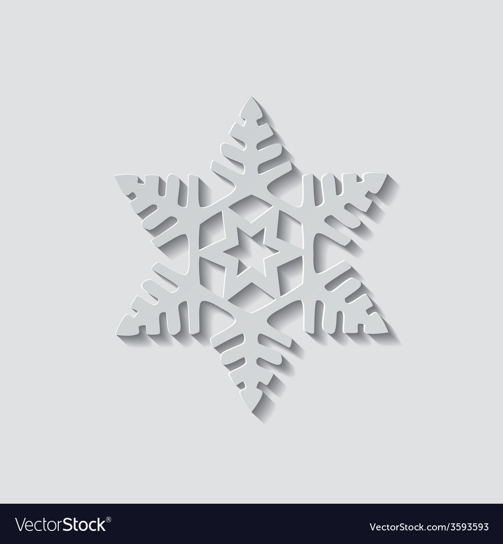 Snowflake Shape Icon vector image