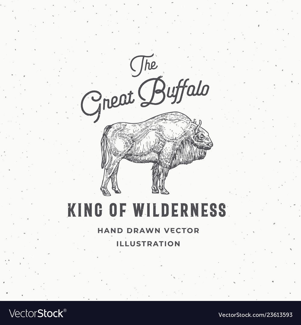 The great buffalo abstract sign symbol or