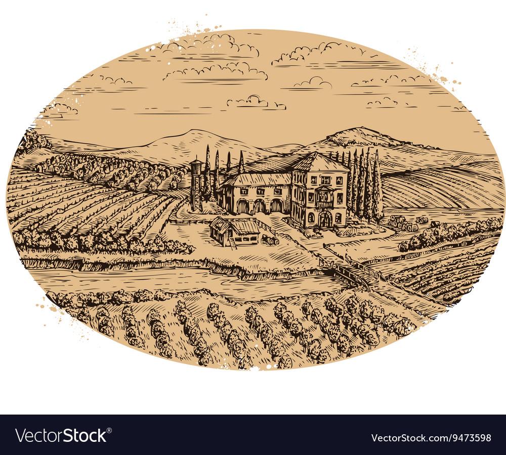 Vineyard landscape Hand-drawn vintage farm