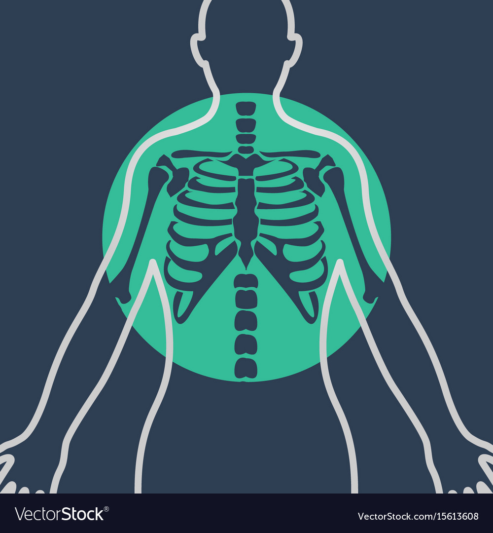 Chest x-ray logo icon design vector image