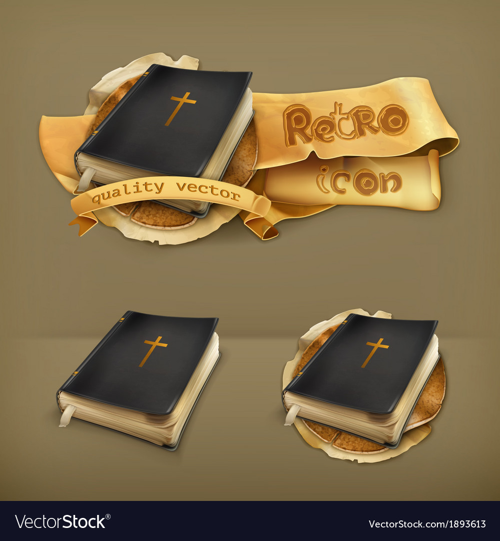 Bible icon vector image