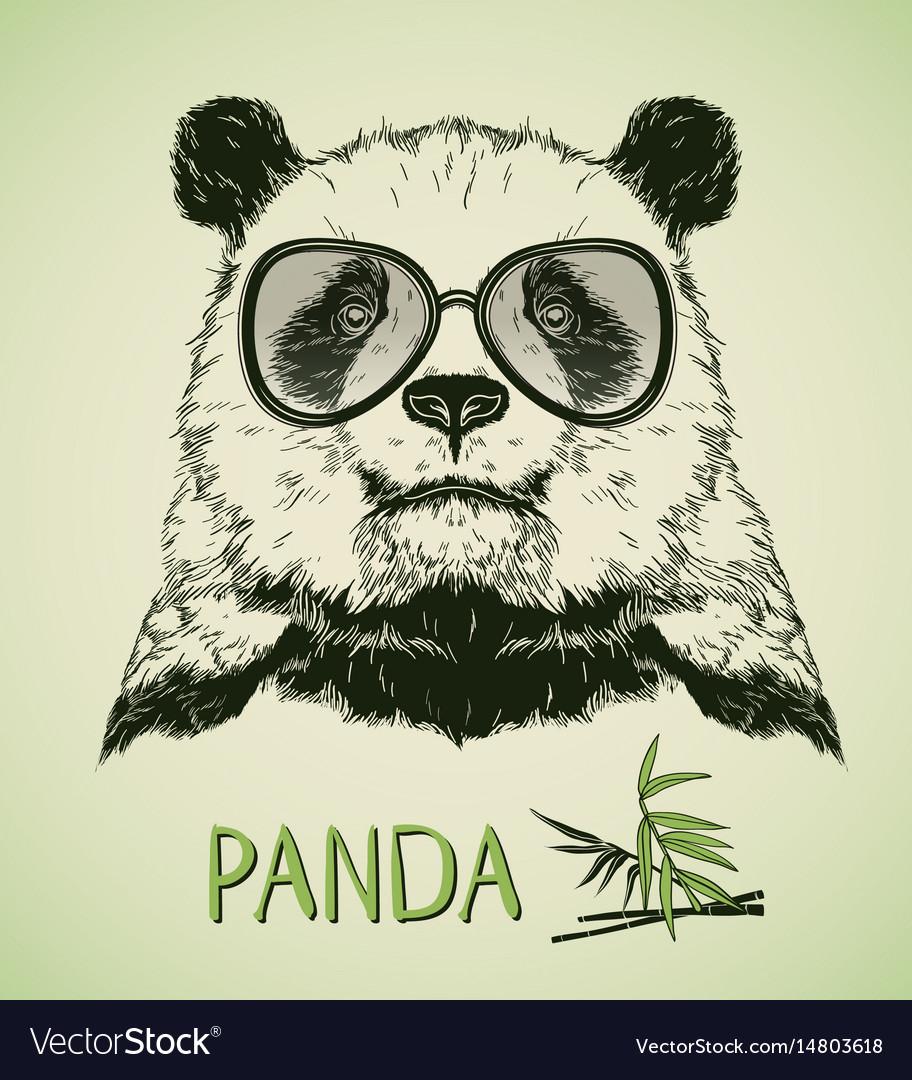 Hand drawn portrait of panda bear with glasses